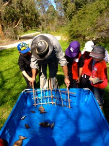Fishing game Australia
